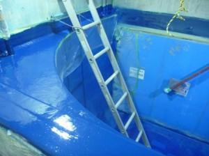 トビウオ水槽3