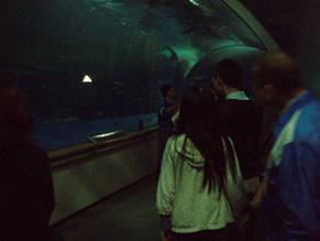 神話の海トンネル通路