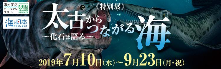 [特別展]太古からつながる海〜化石は語る〜2019年7月10日(水)〜9月23日(月・祝)